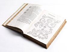 Detail images: Boccaccios Genealogien mit 13 Holzschnitten von 1532