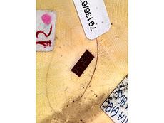Detail images: Okimono: Frau mit Kindern
