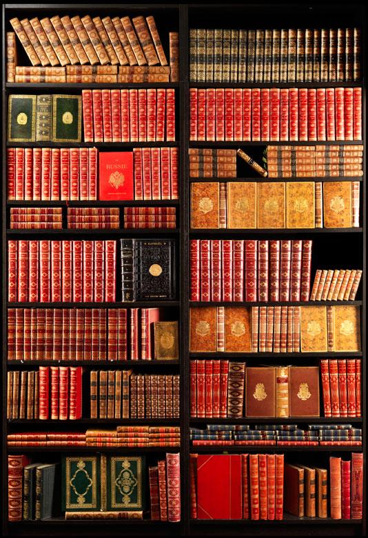 Eine Bibliothek des 19. Jahrhunderts