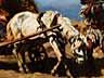 Detail images: August Xaver Carl von Pettenkofen, 1822 Wien - 1889