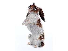 Meissener Porzellanfigur eines Bologneser-Hundes