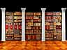 Detailabbildung: Bibliothek Nr. II