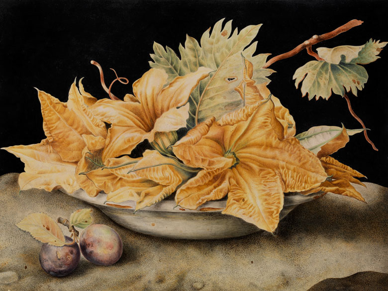 Giovanna Garzoni, 1600 Ascoli – 1670 Rom