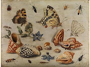 Jan van Kessel, 1641 – 1680