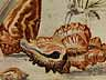 Detail images: Jan van Kessel, 1641 – 1680