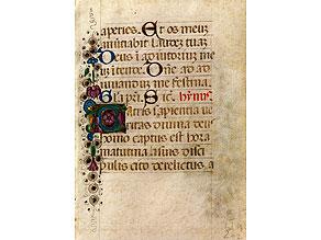 Kleine Pergamentbuchseite mit Buchmalerei