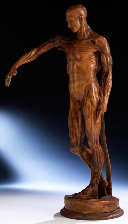 Anatomisches Wachsmodell eines stehenden Mannes ohne Körperhaut mit Darstellung der subkutanen Muskulatur, Ludovico Cigoli, zug.