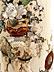 Detail images:  Großes Deckelgefäß in Elfenbein Shibayama