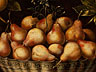 Detailabbildung: Italienisch/ spanischer Maler des 17. Jahrhunderts