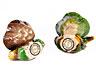 Detail images:  Zwei kleine Gefäße mit Ente