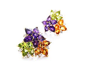 Multicolor-Ohrclipse