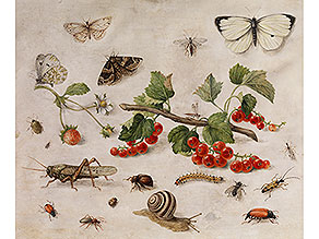 Jan van Kessel d. Ä.,  1626 Antwerpen – 1679 ebenda