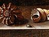 Detailabbildung: Adriaen Coorte, 1660 – 1723