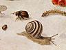 Detail images:  Jan van Kessel d. Ä., 1626 Antwerpen – 1679 ebenda