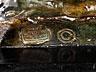Detail images: † Nach Pierre-Auguste Renoir, 1841 Limoges - 1919 Cagnes-sur-Mer