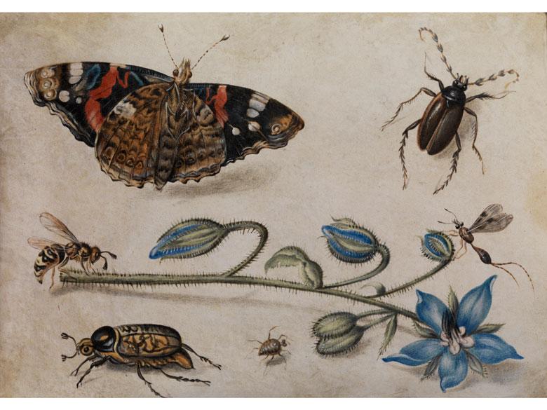 Jan van Kessel, 1626 Antwerpen – 1679 ebenda, Art des